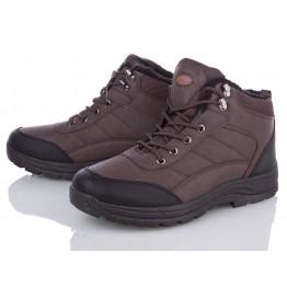 Мужские ботинки 0679-2