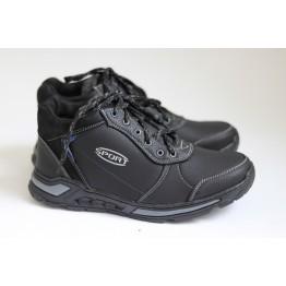 Мужские ботинки 66 черный